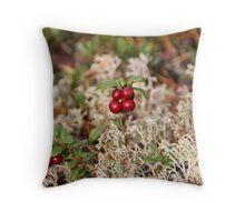 Airelles - Cranberries Throw Pillow
