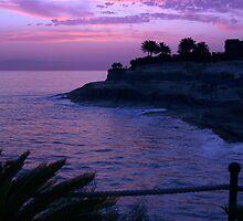 Violet Skies by TrueBavarian
