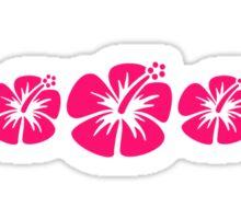 Three pink hibiscus Sticker