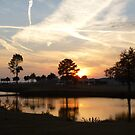 Riceland Sunset by WildestArt