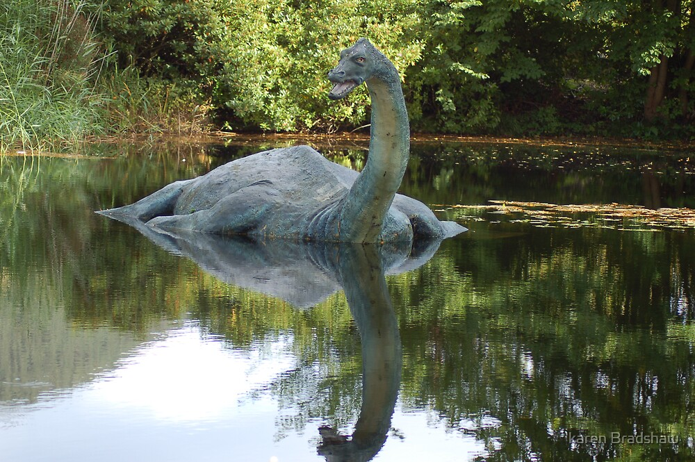 Is this really Nessy ????? by karen Bradshaw