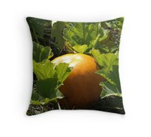 Autumn's Fruit Throw Pillow