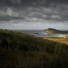 Cape Bruny, Tasmania by NickMonk