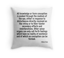All knowledge or form conception is evoked through the medium of the eye, either in response to disturbances directly received on the retina or to their fainter secondary effects and reverberations.  Throw Pillow