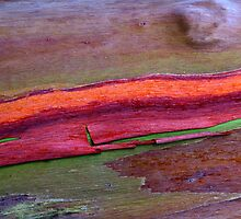 Orange Flow by taueva