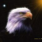 EAGLE LOOKOUT by Madeline M  Allen