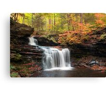 R. B. Ricketts in the Changing Forest  Canvas Print