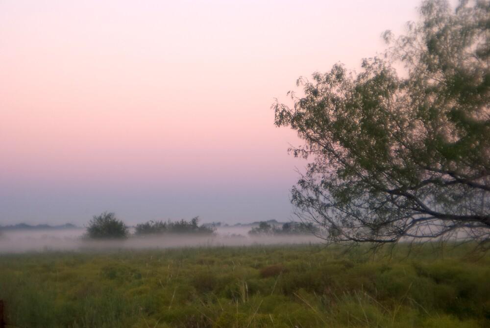 Fog At Dawn by marymccabe