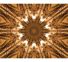 Bronze Star Photographic Print