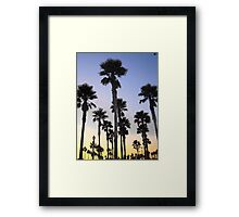 Palm Skies Framed Print