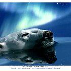 """Aurora Dreaming"" Polar Bear & Aurora by Skye Ryan-Evans"