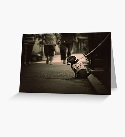 Cute dog with attitude, Tokyo, Japan Greeting Card