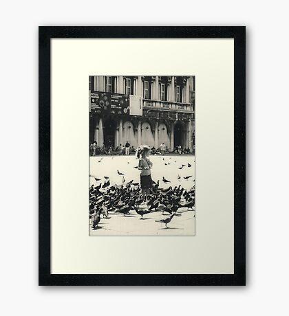 Little girl and pigeons in Venice Framed Print