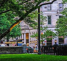 A View From Central Park by Mary Carol Story