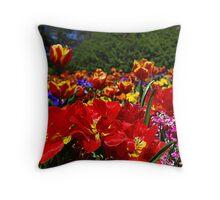 The Colours of Floriade Throw Pillow