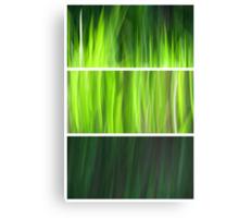 Organic - Triptych Canvas Print