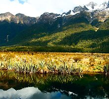 Mirror Lake, Milford Sound, New Zealand by jwatson
