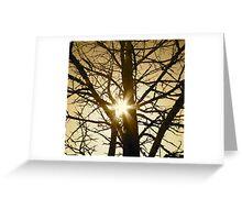 filter Greeting Card
