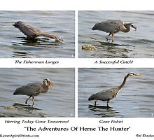 """""""The Adventures Of Herne The Hunter"""" by NaturePrints"""