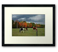 Autumn Storms Framed Print