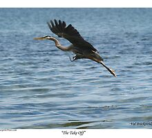 """""""The Take Off"""" by NaturePrints"""