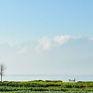 rural life in China country by sweetriver