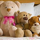 three bears by beebite