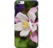 Aquilegea iPhone Case/Skin