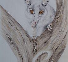 Praying Possum by KathrynLawArt