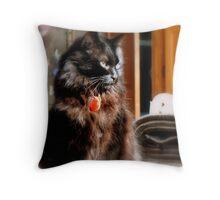 Through a Cat's eyes Throw Pillow