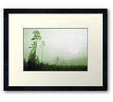Silence in the foggy Framed Print