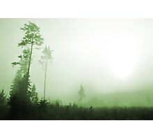 Silence in the foggy Photographic Print