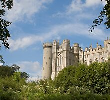 Arundel Castle by ©FoxfireGallery / FloorOne Photography
