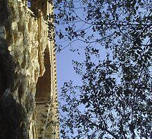 Aqueduc Of Roquefavour Bridge and Nature by boldoflorine