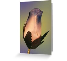 Rose 13 Greeting Card