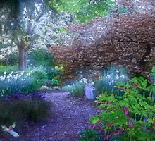 Enchanted Pathway by Snapshot20