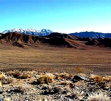 Isolated Death Valley by jpryce
