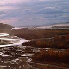 Misty Alaska Morning by Patricia Montgomery