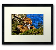 Teds Day Out......... Framed Print