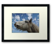 Under The Same Sky, Dreaming The Same Dream Framed Print