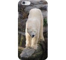 Polar Bear Rock (Berlin)  iPhone Case/Skin
