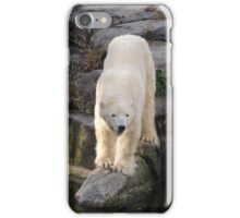 Polar Bear Rock (Berlin)  iPhone Case/Skin