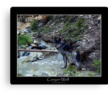CANYON WOLF Canvas Print
