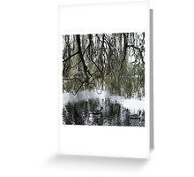 """A natural symmetry"" - Regents Park, London (2014) Greeting Card"