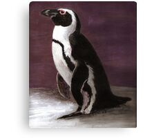 Penguin dreams Canvas Print
