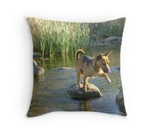 Now if I concentrate really hard.... Throw Pillow