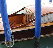 Water Taxi In Venice Italy by M. van Oostrum