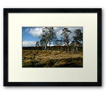 """Wind Dance"" Framed Print"