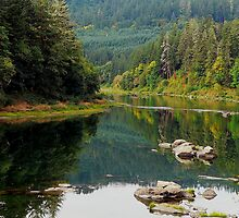 Reflection on the Umpqua River by Chuck Gardner