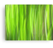 Grass - Light Canvas Print
